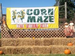 Image for Mayr Family Farms Corn Maze